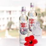 Ibiza-Party-Trip-plabo-2435