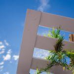 Ibiza-Party-Trip-plabo-2636